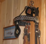 Norwegian Headstall