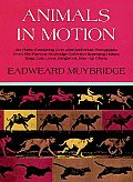 Muybridge Book Animals in Motion