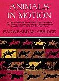 Muybridge Book Animals in Motion